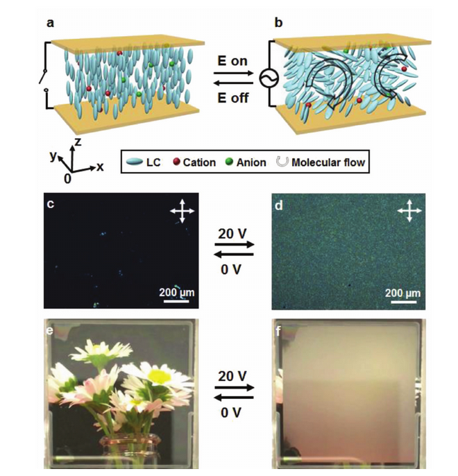 Light-Driven Electrohydrodynamic Instabilities in Liquid Crystals.