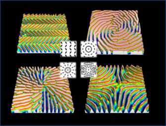 Translating 2D director profile to 3D topography in a liquid crystal polymer