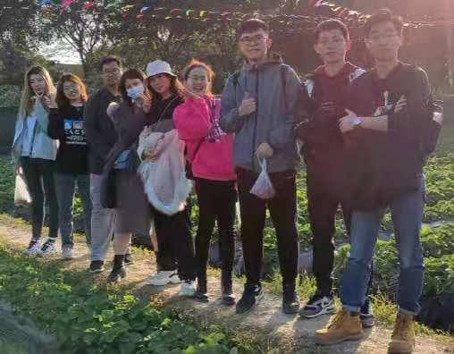 2020年11月 2019级学生团队摘草莓